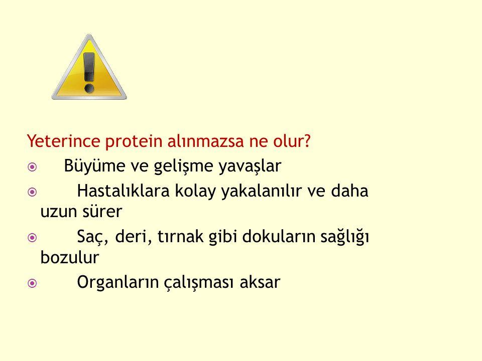 Yeterince protein alınmazsa ne olur Büyüme ve gelişme yavaşlar