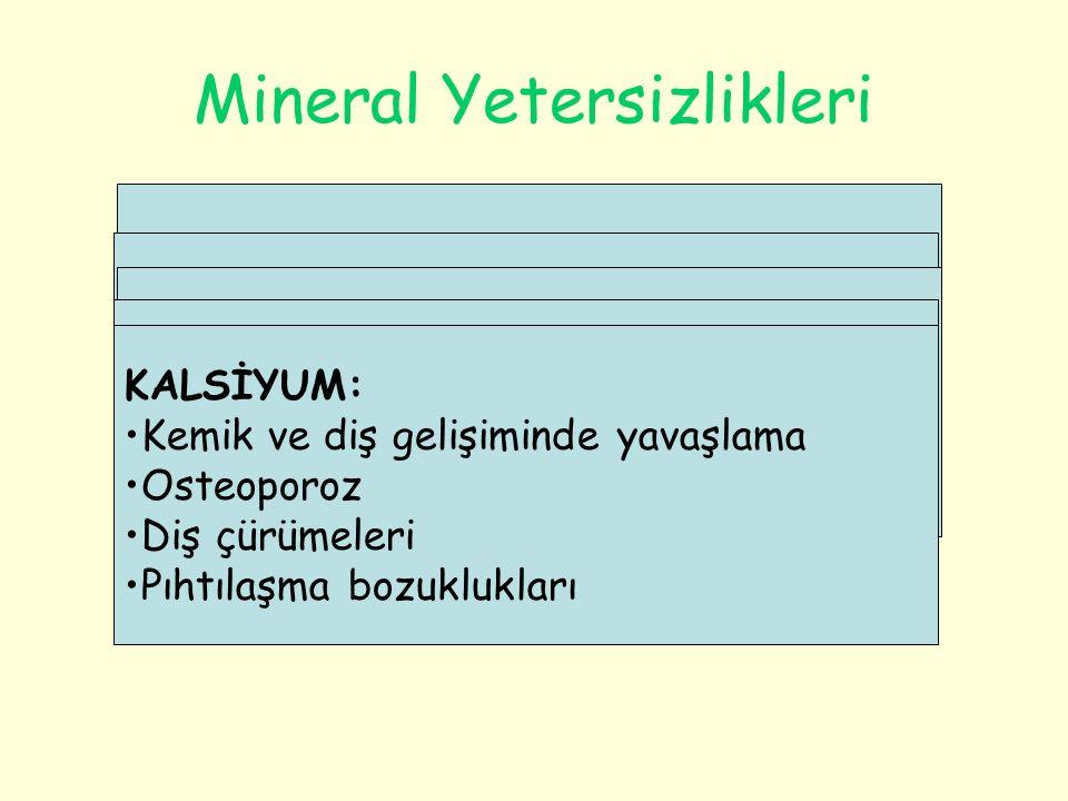 Mineral Yetersizlikleri