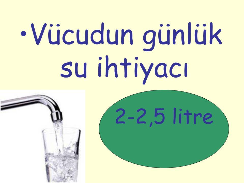 Vücudun günlük su ihtiyacı