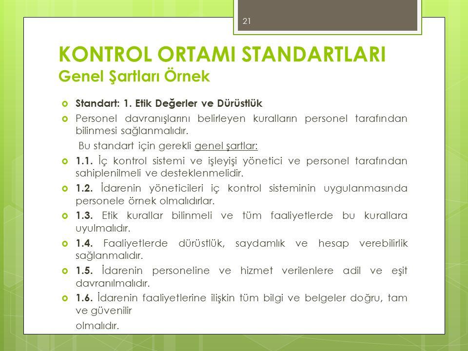 KONTROL ORTAMI STANDARTLARI Genel Şartları Örnek