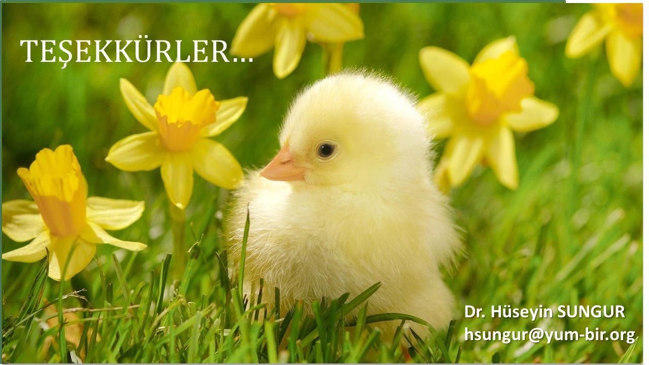 TEŞEKKÜRLER… Dr. Hüseyin SUNGUR hsungur@yum-bir.org