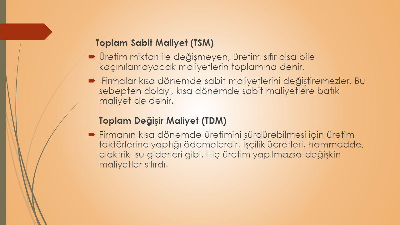 Toplam Sabit Maliyet (TSM)