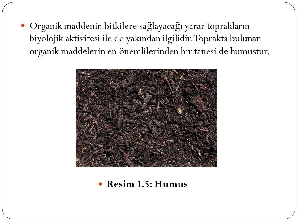 Organik maddenin bitkilere sağlayacağı yarar toprakların biyolojik aktivitesi ile de yakından ilgilidir. Toprakta bulunan organik maddelerin en önemlilerinden bir tanesi de humustur.