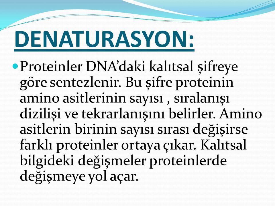 DENATURASYON: