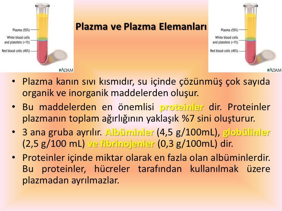 Plazma ve Plazma Elemanları
