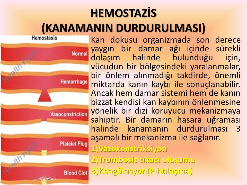 HEMOSTAZİS (KANAMANIN DURDURULMASI)