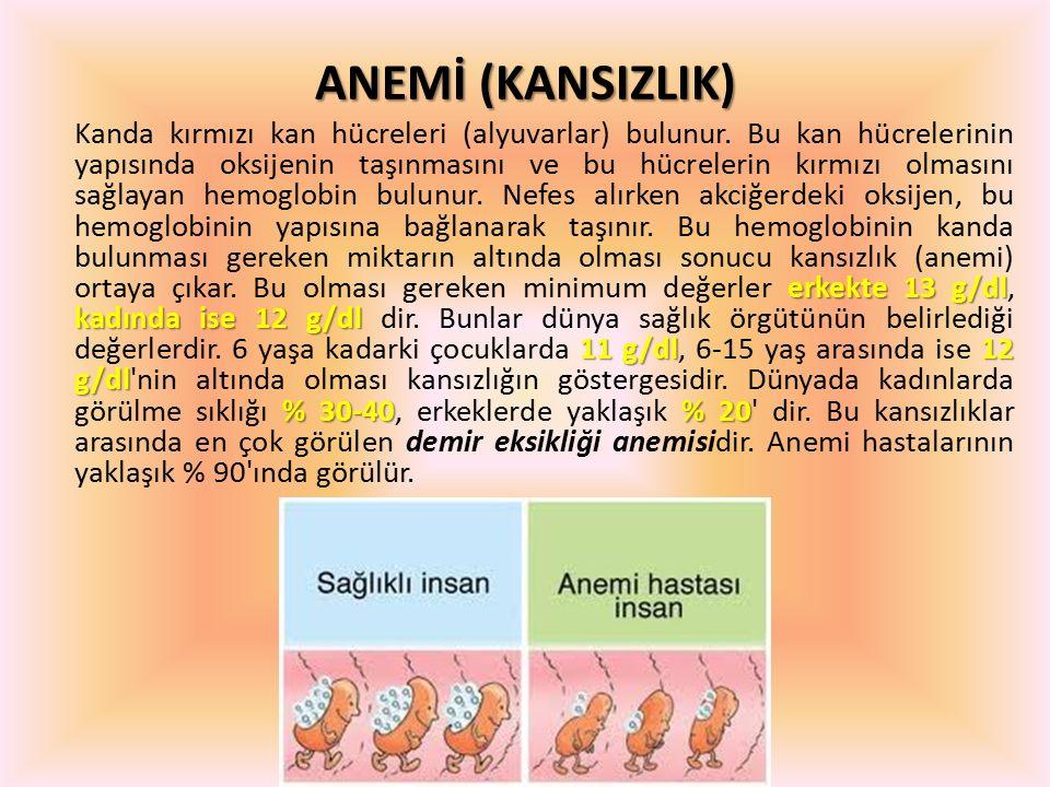 ANEMİ (KANSIZLIK)