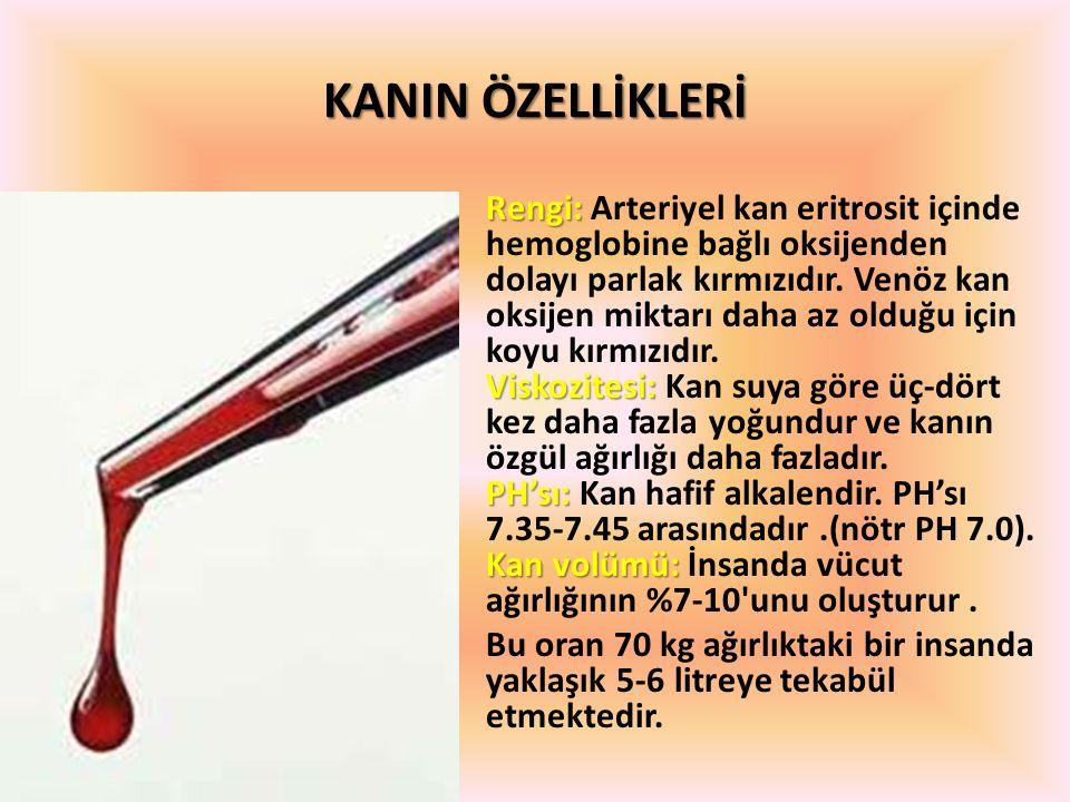 KANIN ÖZELLİKLERİ