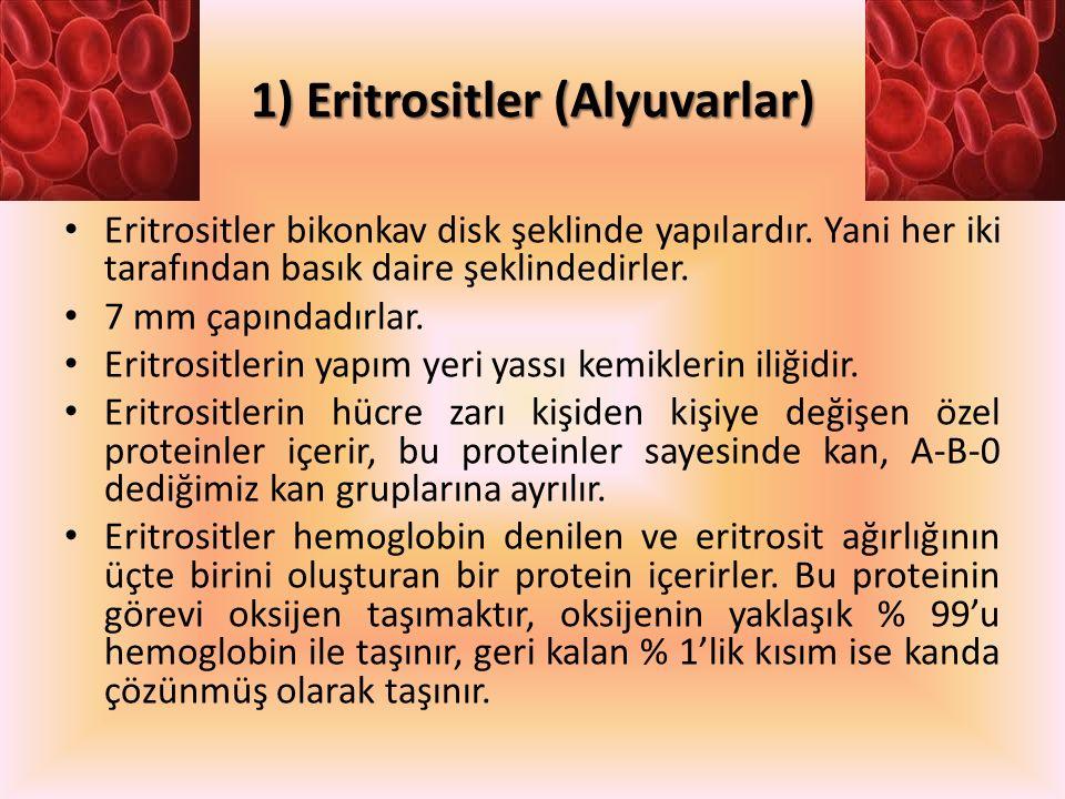 1) Eritrositler (Alyuvarlar)