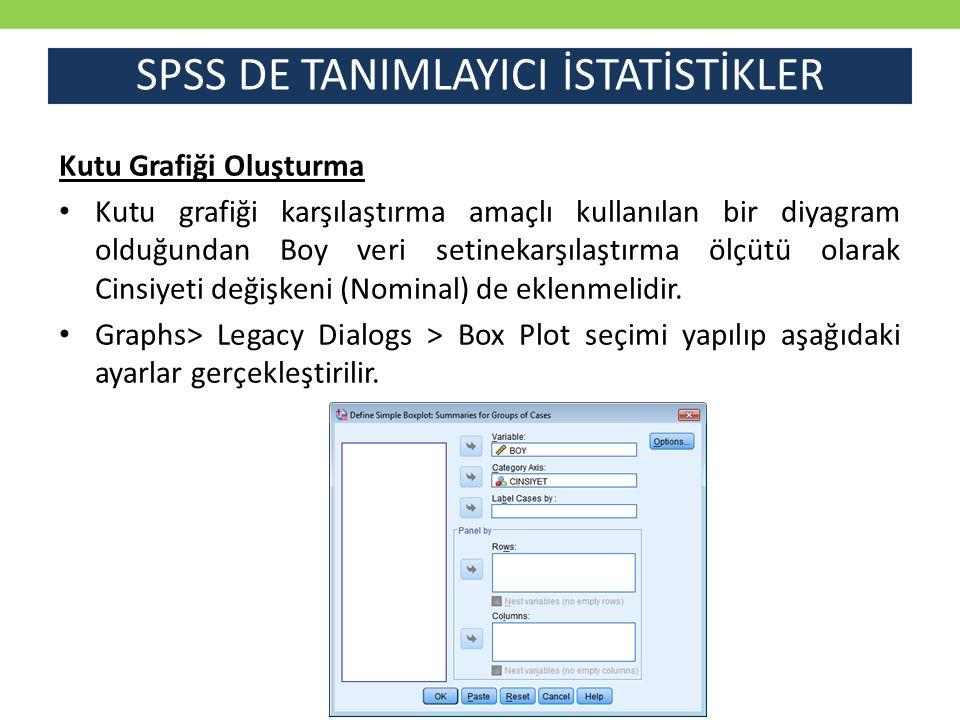 SPSS DE TANIMLAYICI İSTATİSTİKLER