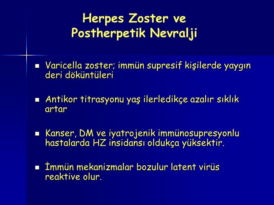 Herpes Zoster ve Postherpetik Nevralji