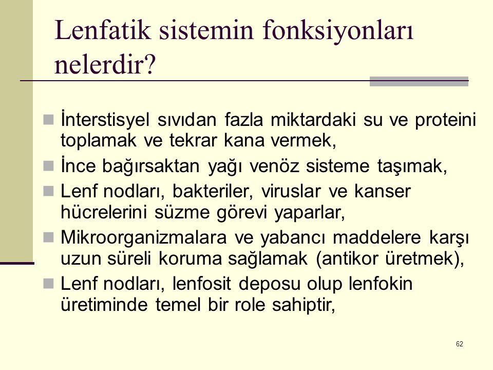Lenfatik sistemin fonksiyonları nelerdir