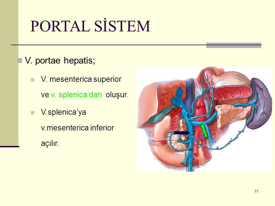PORTAL SİSTEM V. portae hepatis;