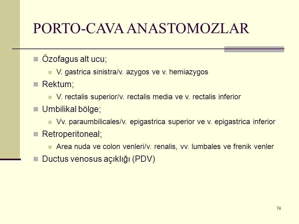 PORTO-CAVA ANASTOMOZLAR