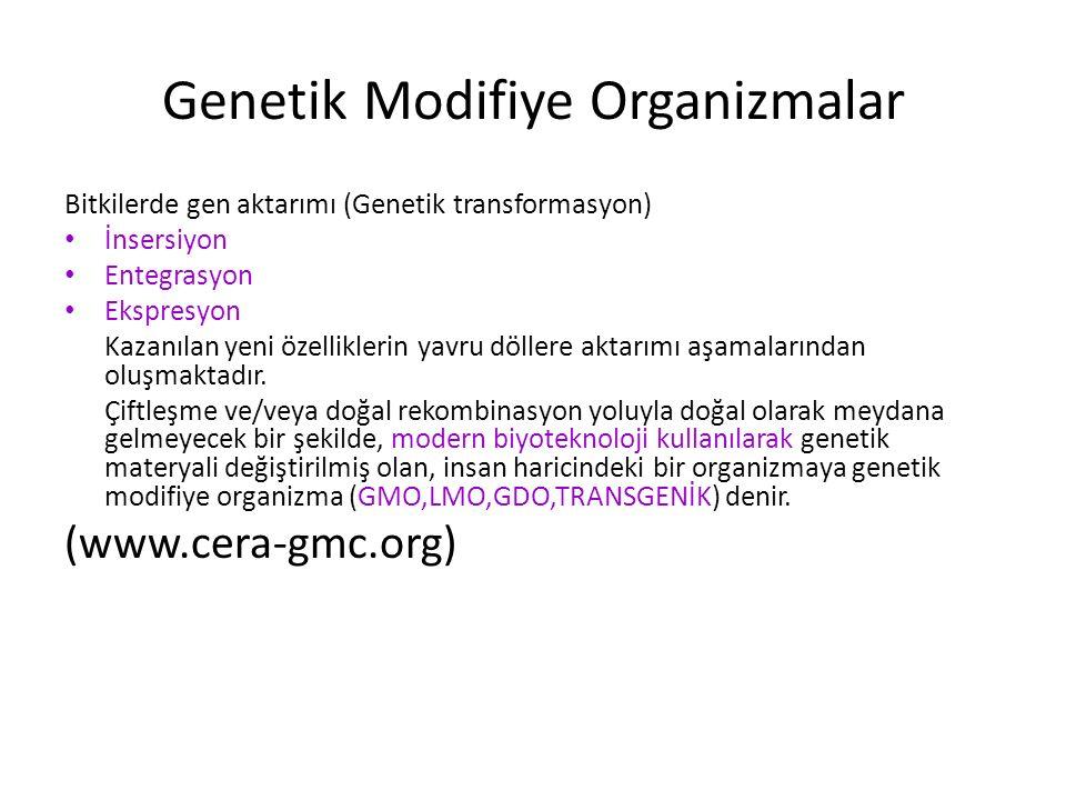 Genetik Modifiye Organizmalar