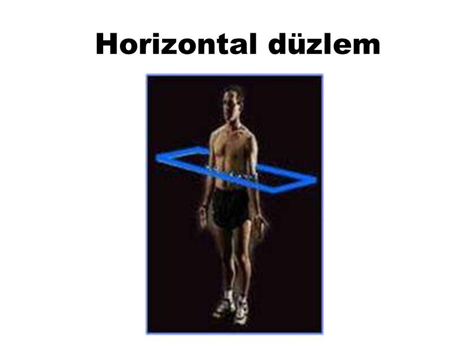 Horizontal düzlem