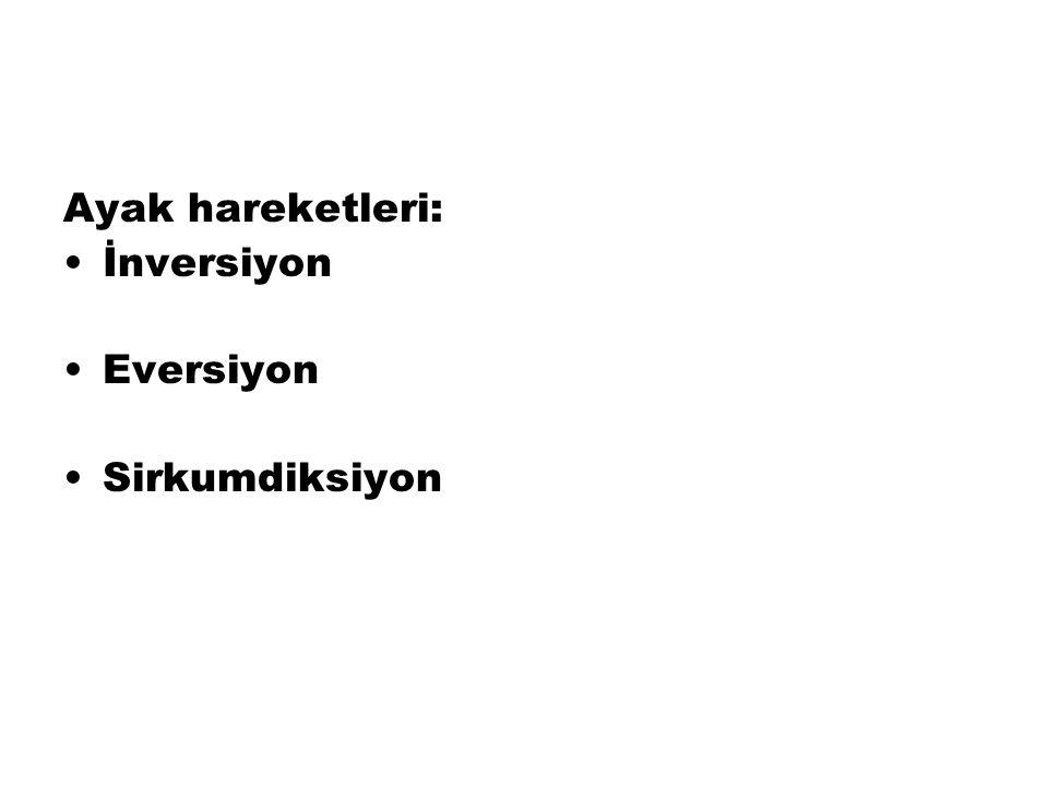 Ayak hareketleri: İnversiyon Eversiyon Sirkumdiksiyon
