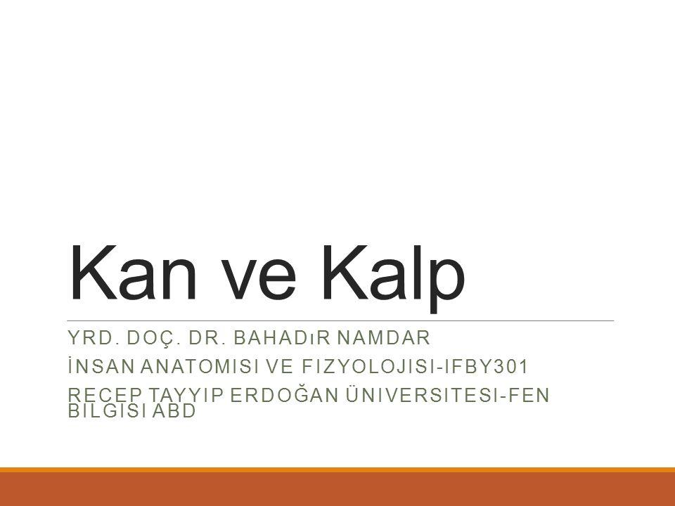 Kan ve Kalp Yrd. Doç. Dr. Bahadır Namdar