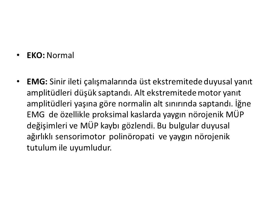 EKO: Normal