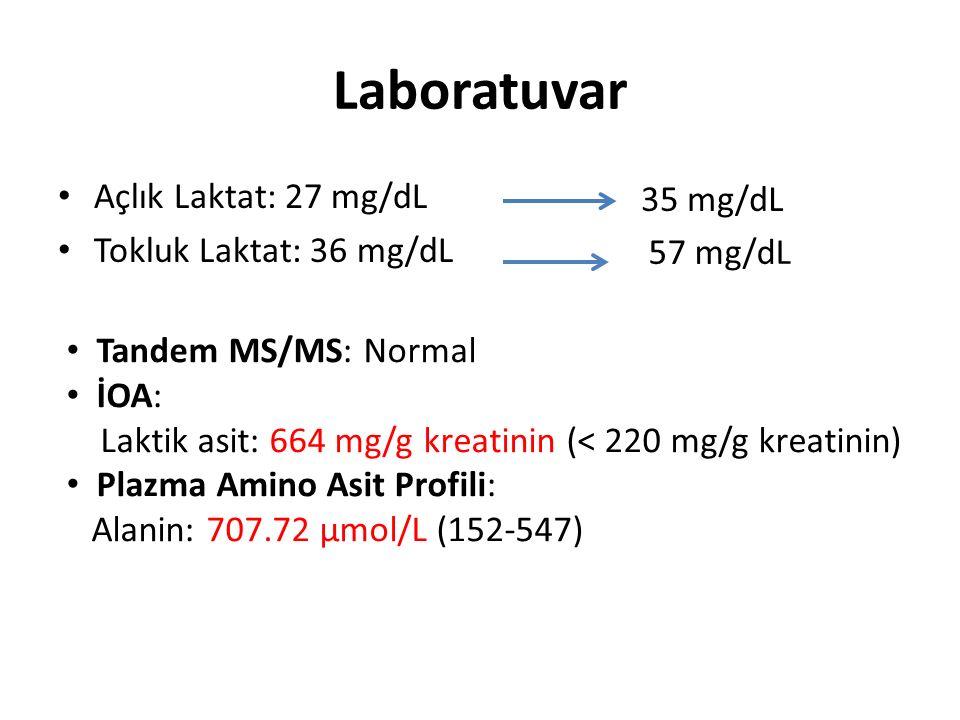 Laboratuvar Açlık Laktat: 27 mg/dL 35 mg/dL Tokluk Laktat: 36 mg/dL