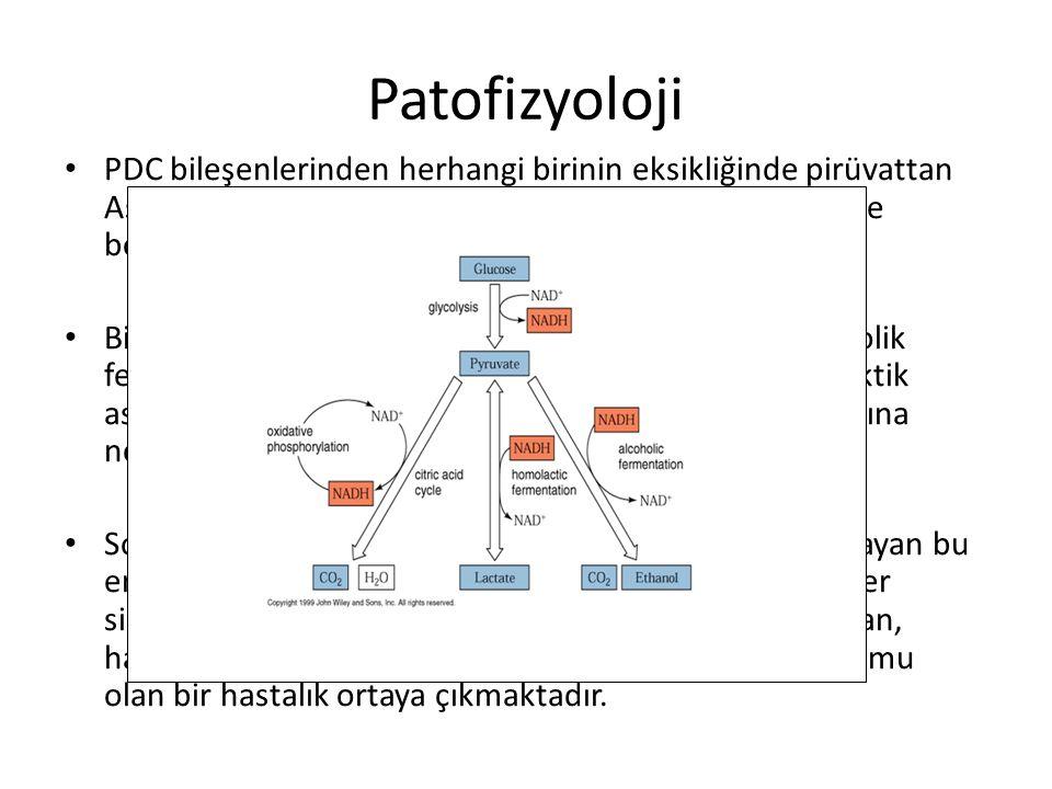 Patofizyoloji PDC bileşenlerinden herhangi birinin eksikliğinde pirüvattan Asetil KoA oluşumu ve dolayısıyla sitrik asit döngüsü de bozmaktadır.
