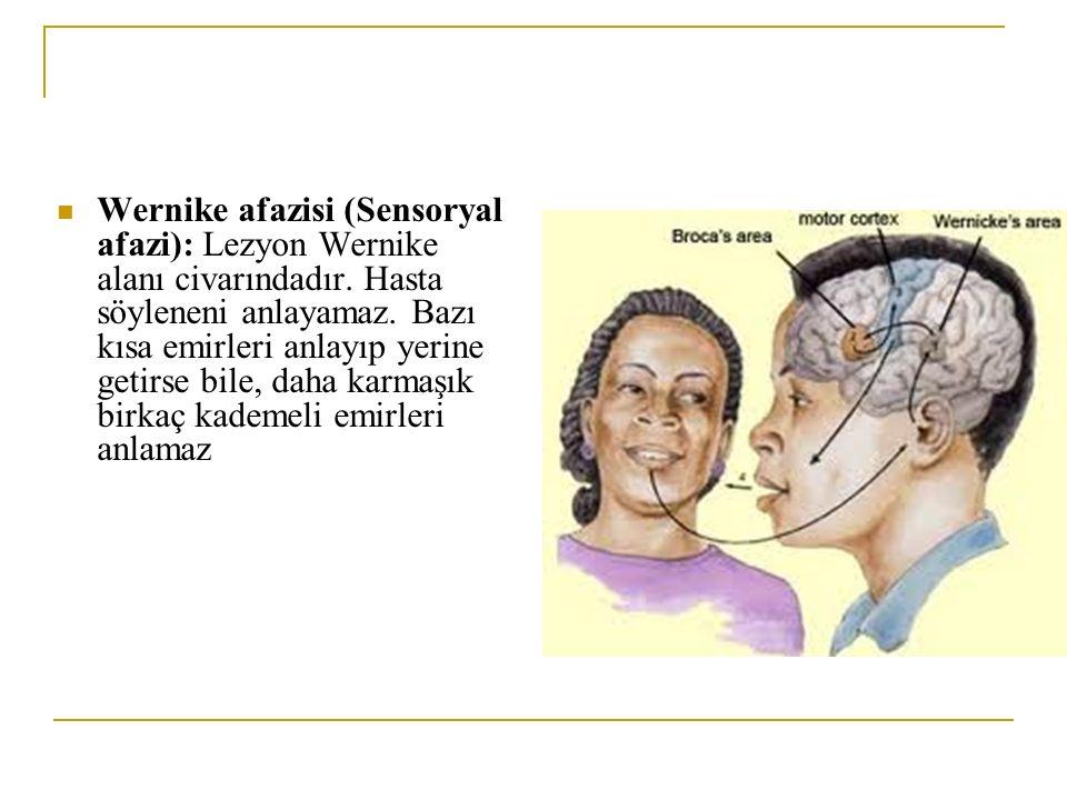 Wernike afazisi (Sensoryal afazi): Lezyon Wernike alanı civarındadır