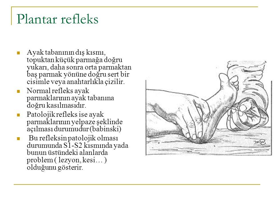 Plantar refleks