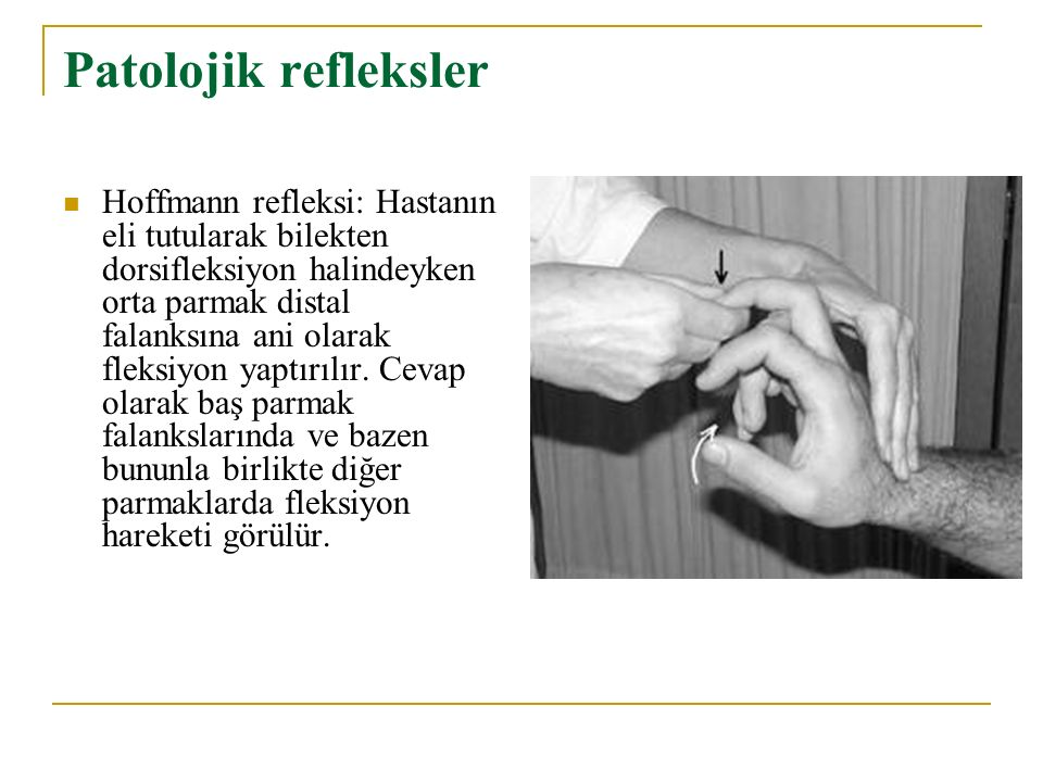 Patolojik refleksler