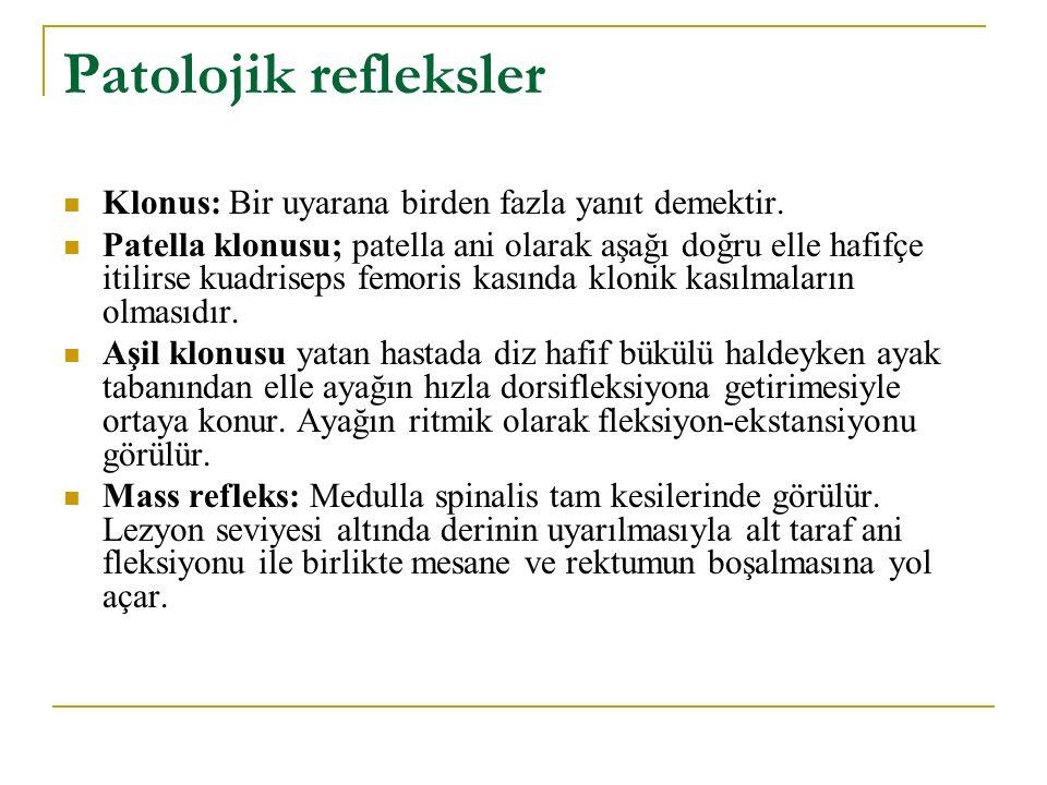 Patolojik refleksler Klonus: Bir uyarana birden fazla yanıt demektir.