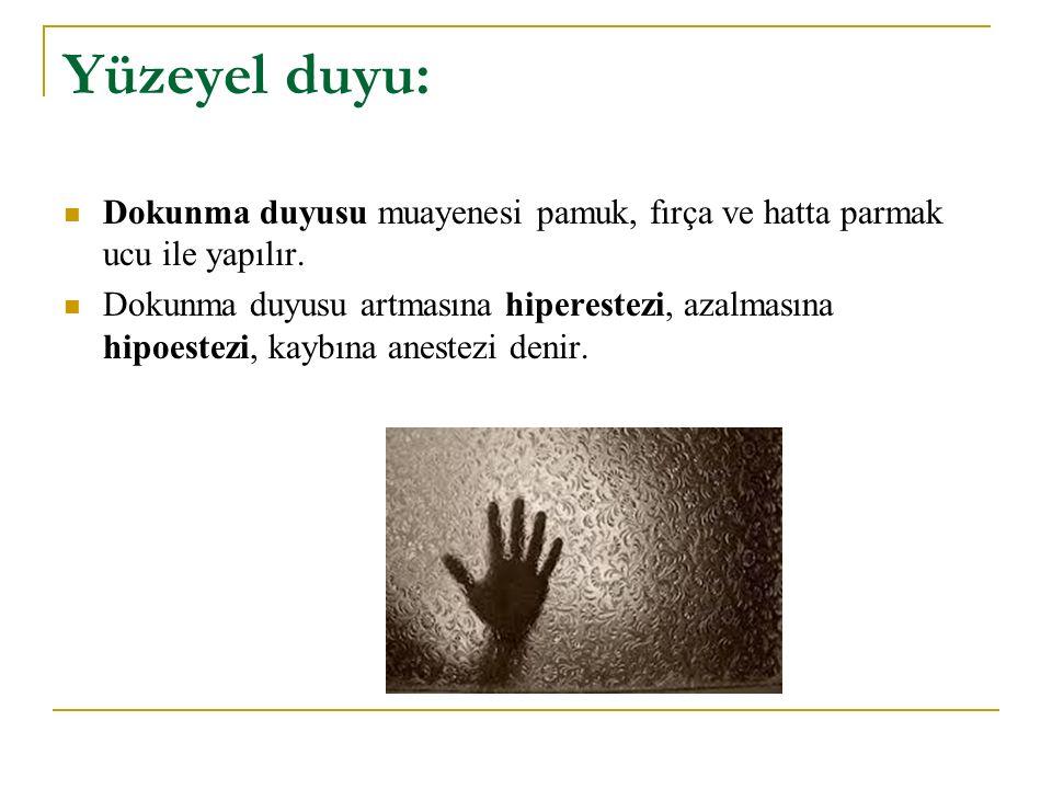 Yüzeyel duyu: Dokunma duyusu muayenesi pamuk, fırça ve hatta parmak ucu ile yapılır.