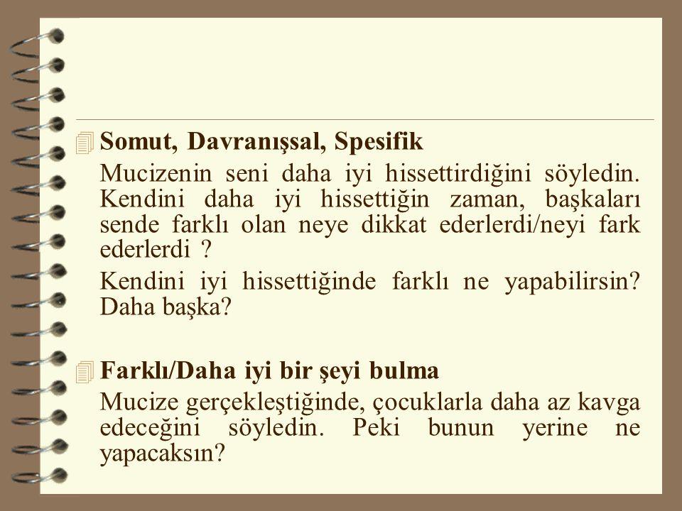 Somut, Davranışsal, Spesifik