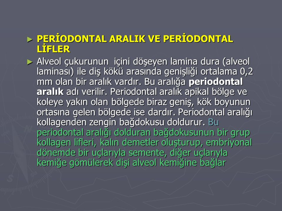 PERİODONTAL ARALIK VE PERİODONTAL LİFLER