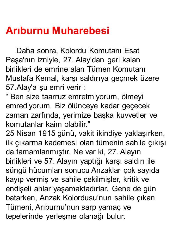 Arıburnu Muharebesi