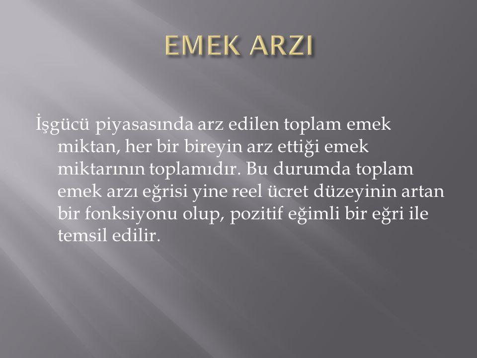 EMEK ARZI