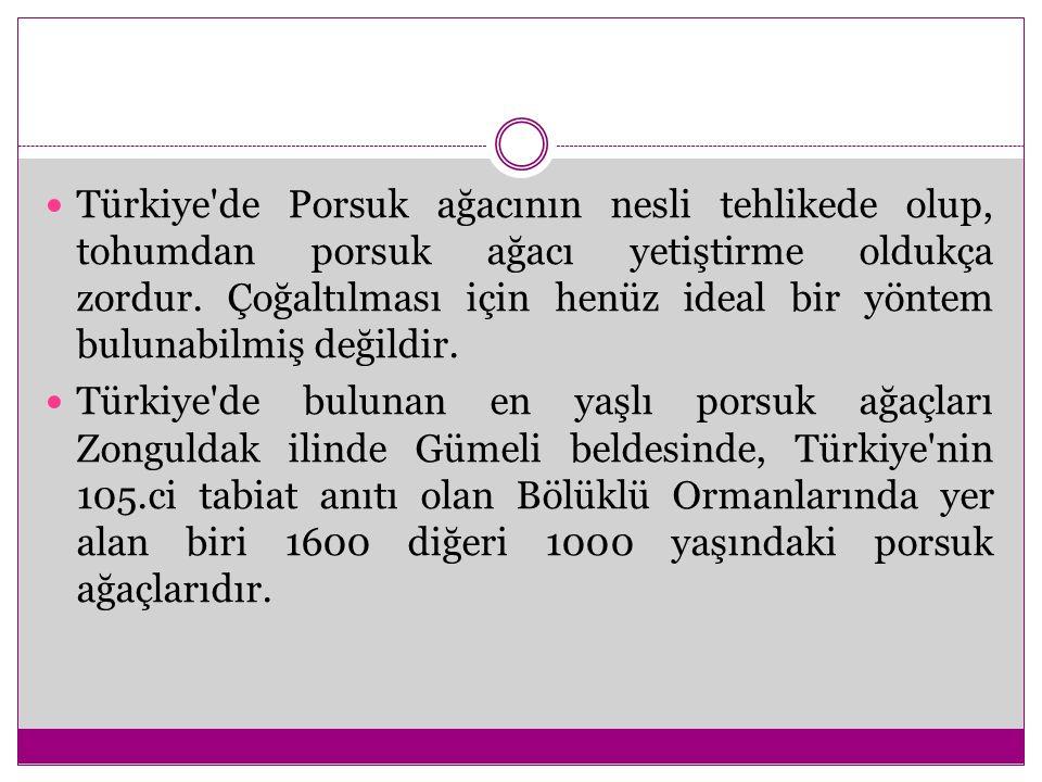 Türkiye de Porsuk ağacının nesli tehlikede olup, tohumdan porsuk ağacı yetiştirme oldukça zordur. Çoğaltılması için henüz ideal bir yöntem bulunabilmiş değildir.