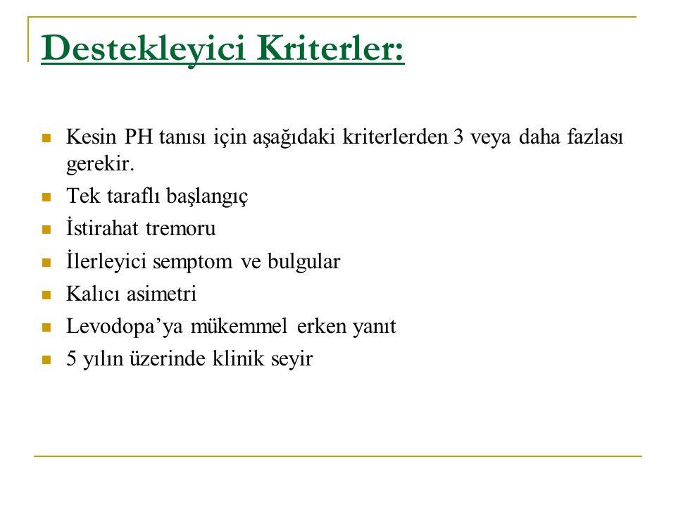 Destekleyici Kriterler: