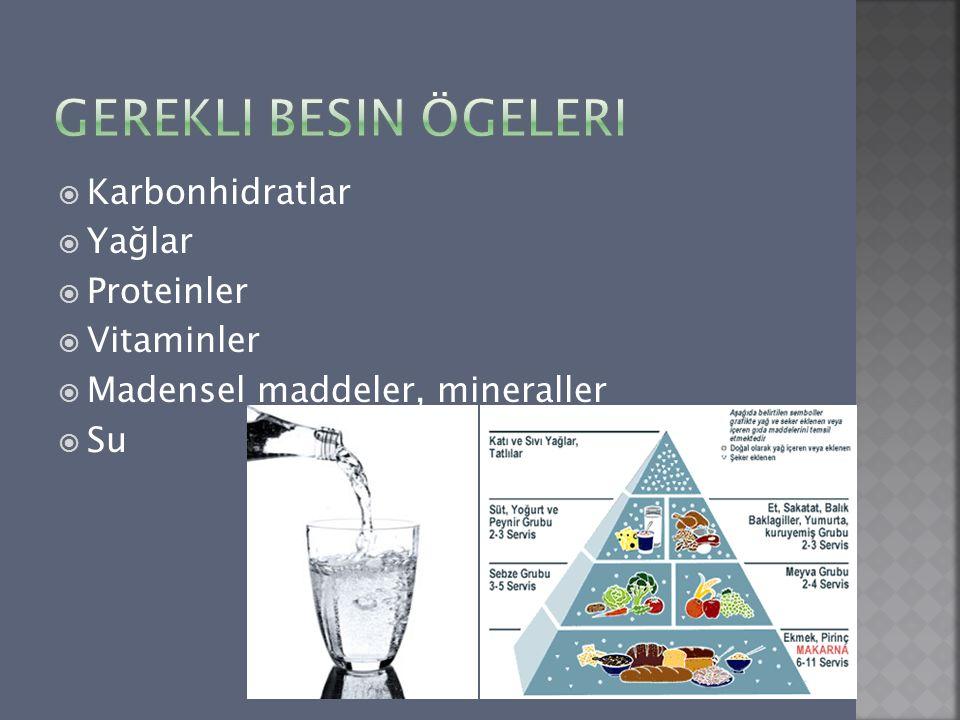 Gerekli Besin Ögeleri Karbonhidratlar Yağlar Proteinler Vitaminler