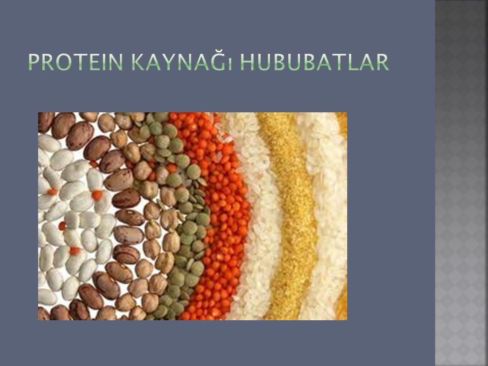 Protein kaynağı hububatlar