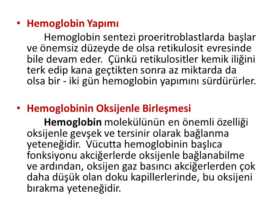 Hemoglobin Yapımı