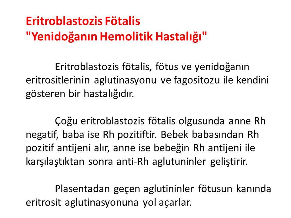 Eritroblastozis Fötalis Yenidoğanın Hemolitik Hastalığı
