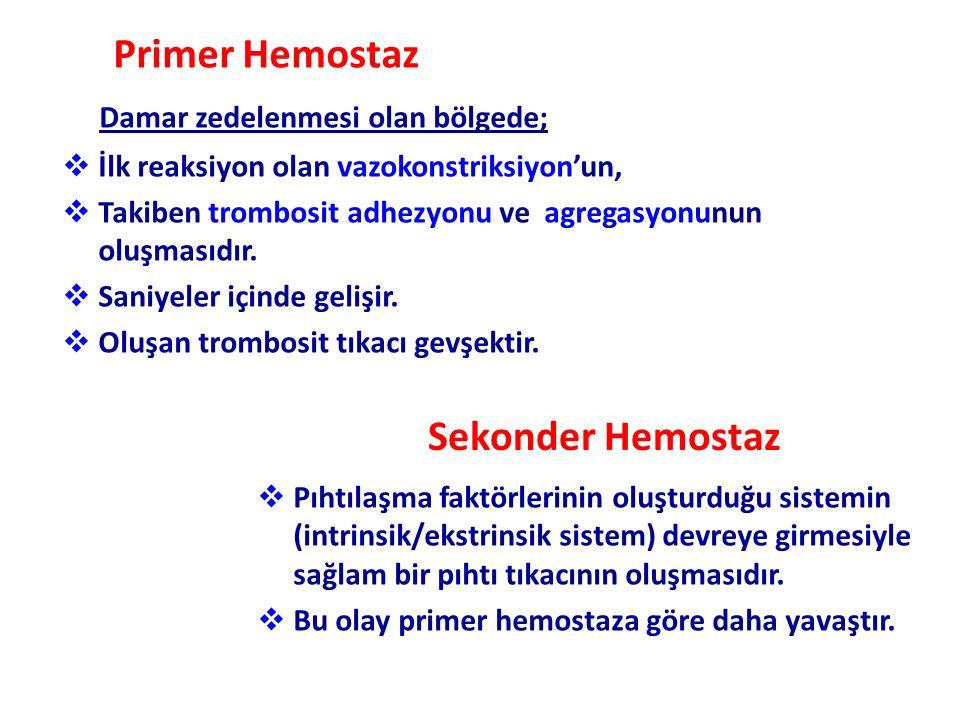 Primer Hemostaz Sekonder Hemostaz