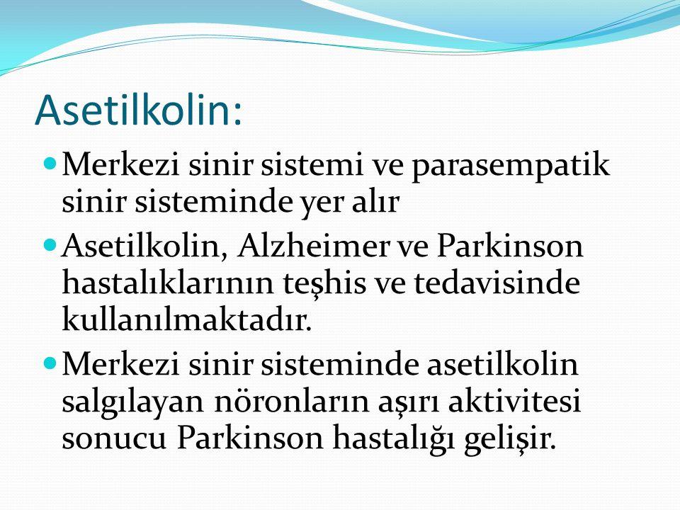 Asetilkolin: Merkezi sinir sistemi ve parasempatik sinir sisteminde yer alır.