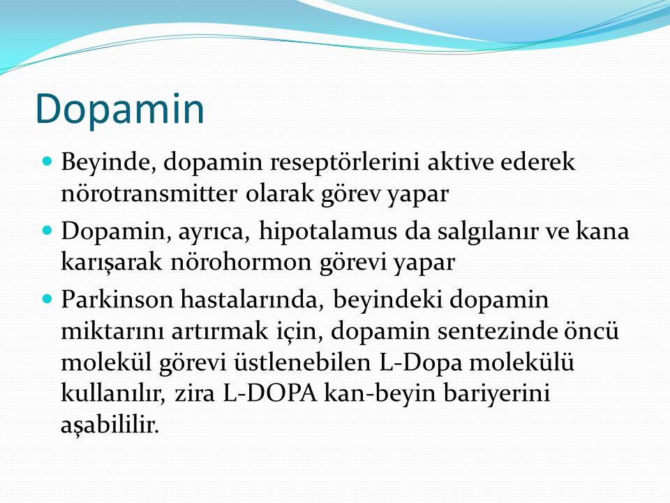 Dopamin Beyinde, dopamin reseptörlerini aktive ederek nörotransmitter olarak görev yapar.