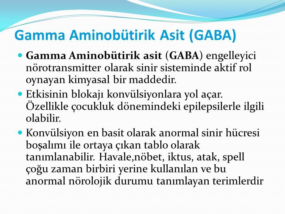 Gamma Aminobütirik Asit (GABA)