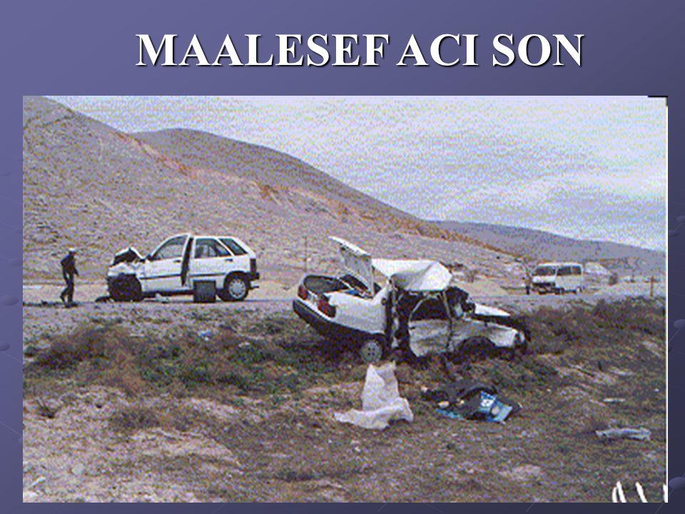 MAALESEF ACI SON