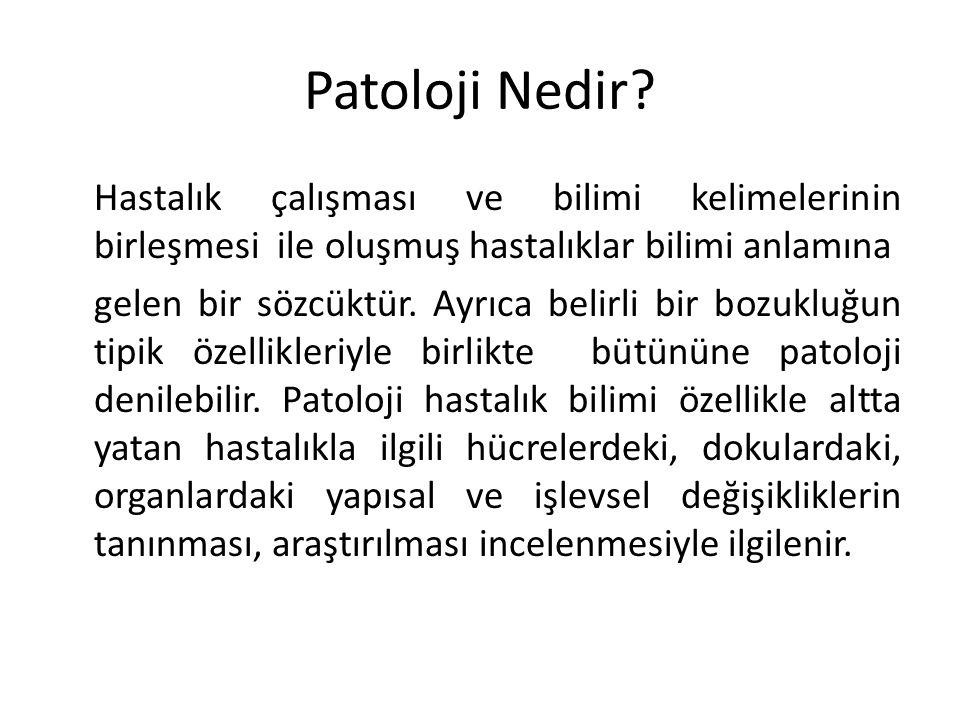 Patoloji Nedir