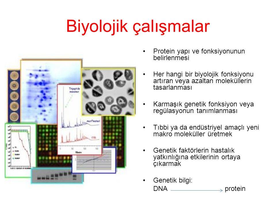 Biyolojik çalışmalar Protein yapı ve fonksiyonunun belirlenmesi