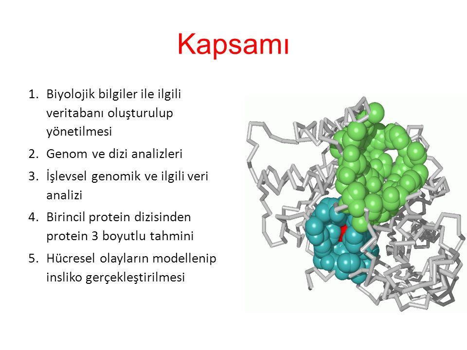 Kapsamı Biyolojik bilgiler ile ilgili veritabanı oluşturulup yönetilmesi. Genom ve dizi analizleri.