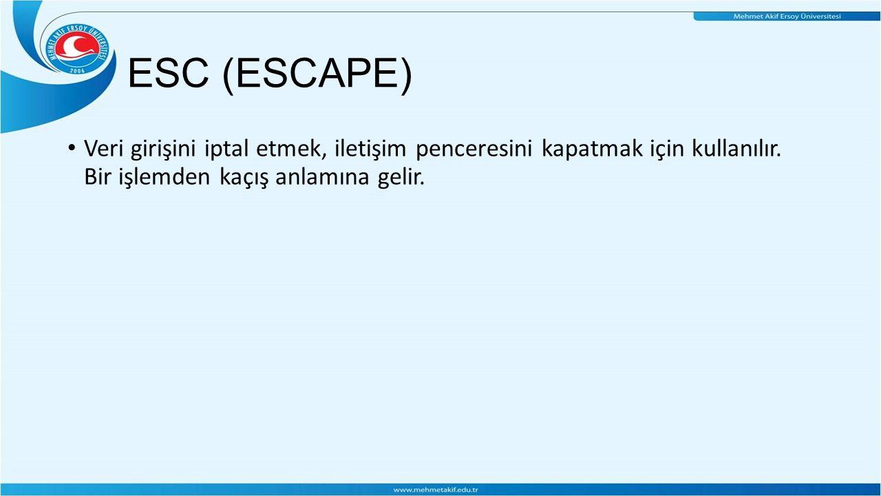 ESC (ESCAPE) Veri girişini iptal etmek, iletişim penceresini kapatmak için kullanılır.