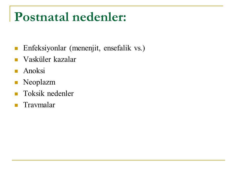 Postnatal nedenler: Enfeksiyonlar (menenjit, ensefalik vs.)